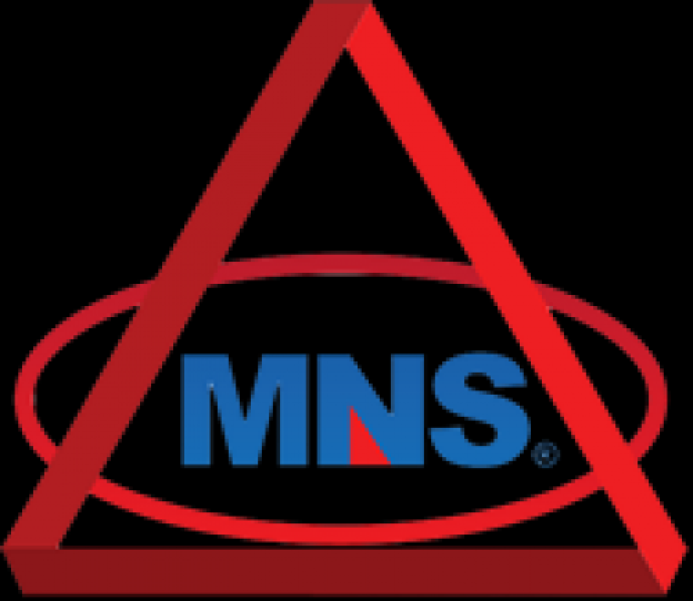MNS_1.png